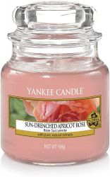 1577142e sun drenched apricot rose small jar rose succulente yankee candle